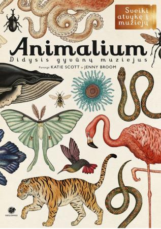 Animalium. Didysis gyvūnų muziejus | Katie Scott, Jenny Broom