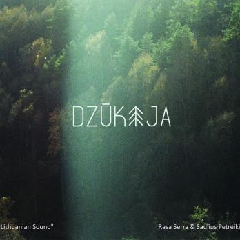 Dzūkija (CD)   Saulius Petreikis