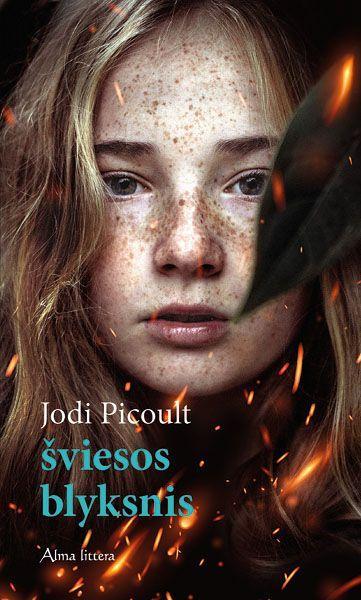 Šviesos blyksnis   Jodi Picoult