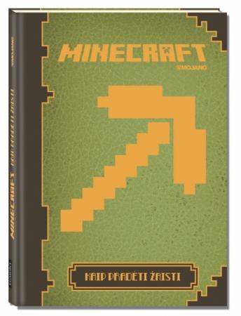 Minecraft. Kaip pradėti žaisti  