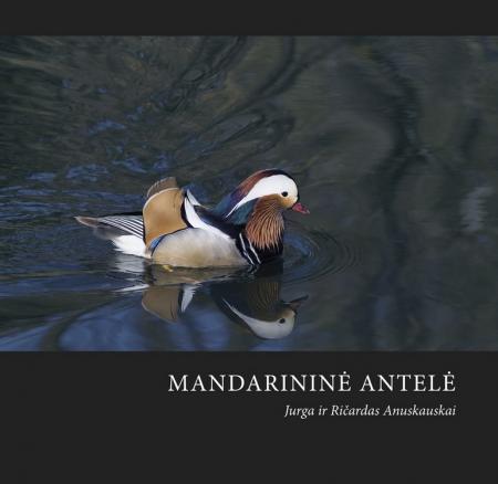 Mandarininė antelė | Ričardas Anusauskas, Jurga Anusauskienė