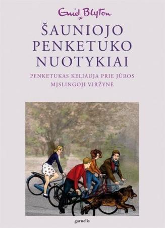 Penketukas keliauja prie jūros. Mįslingoji viržynė (Šauniojo penketuko nuotykiai. Šešta knyga) | Enid Blyton
