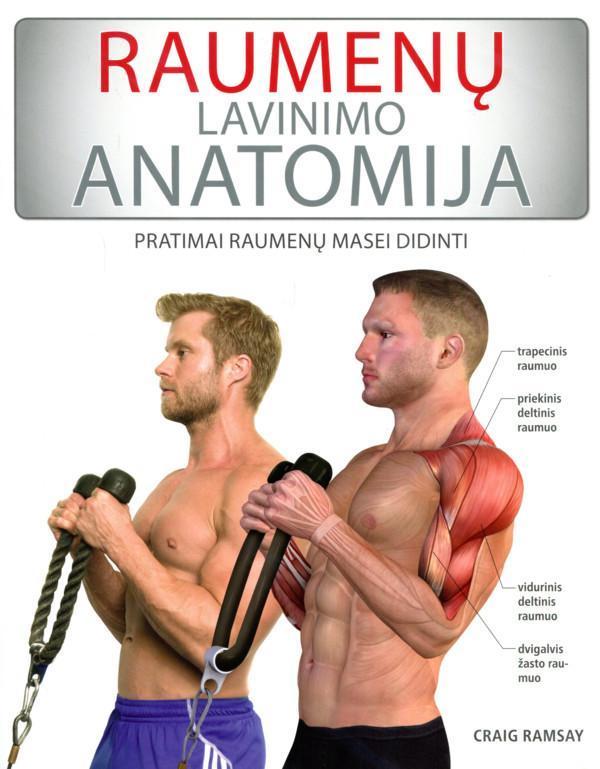 Raumenų lavinimo anatomija. Pratimai raumenų masei didinti | Craig Ramsay
