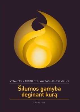 Šilumos gamyba deginant kurą   Vytautas Martinaitis, Valdas Lukoševičius