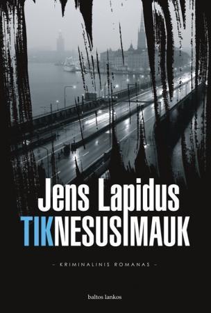 Tik nesusimauk   Jens Lapidus
