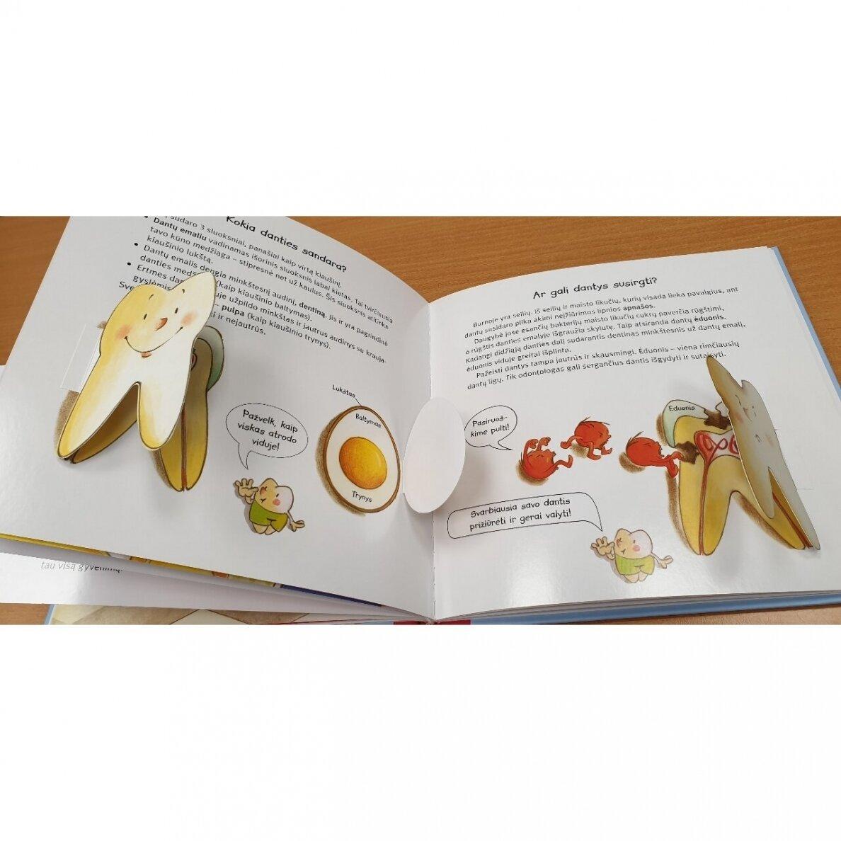 Viskas apie tavo dantukus (su dantukų dėžute) | Iwona Raduzn, Thomas Rohner