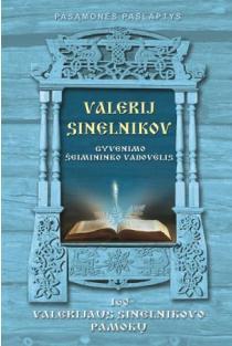 Gyvenimo šeimininko vadovėlis. 160 Valerijus Sinelnikovo pamokų | Valerij Sinelnikov