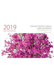 Laukų ir pievų gėlių puokštės. Stalinis 2019 metų kalendorius |