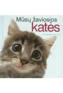 Mūsų žaviosios katės | Pam Brown