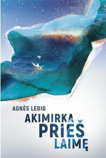 Akimirka prieš laimę | Agnes Ledig