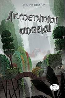 Akmeniniai angelai | Kristina Ohlsson