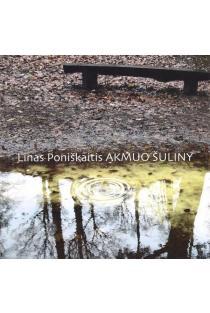 Akmuo šuliny | Linas Poniškaitis