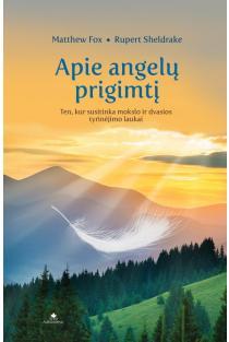 Apie angelų prigimtį | Matthew Fox, Rupert Sheldrake