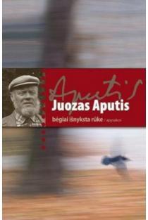 Bėgiai išnyksta rūke | Juozas Aputis