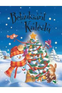 Belaukiant Kalėdų (mėlyna) | Paola Migleri