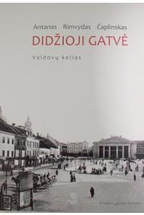 Vilniaus gatvių istorija. Valdovų kelias, 2 knyga. Didžioji gatvė | Antanas Rimvydas Čaplinskas