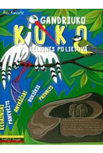 Gandriuko Kuko kelionės po Lietuvą. 3-oji knyga | Rasa Kuncaitė, Gintarė Markevičienė, Jūratė Zailskienė