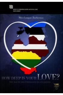 How deep is Your LOVE? Politinių regionų konstravimas   Mindaugas Jurkynas