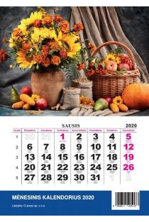 2020 metų kalendorius (2020 mini) |
