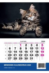 2020 metų kalendorius (3 dalių) |