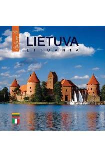 Welcome to Lietuva LT/IT | sud. Danguolė Kandrotienė