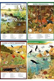 KOMPLEKTAS. Pažinkime Lietuvos gamtą ir gyvūnus. Kas gyvena miškuose, ežeruose, laukuose ir pievose, Baltijos jūroje? |