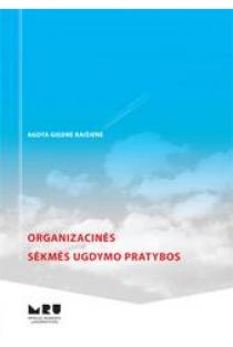 Organizacinės sėkmės ugdymo pratybos | Giedrė Agota Raišienė