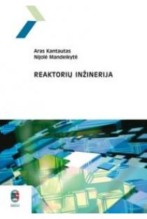 Reaktorių inžinerija | Aras Kantautas, Nijolė Mandeikytė