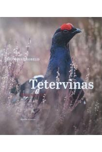 Tetervinas | Eugenijus Drobelis