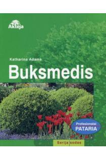 Buksmedis (s. Sodas) | Katharina Adams