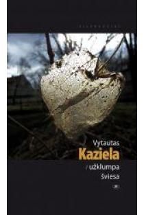 Užklumpa šviesa | Vytautas Kaziela