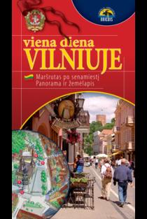 Viena diena Vilniuje 1:18000 |