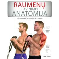 Raumenų lavinimo anatomija  Pratimai raumenų masei didinti | Patogupirkti lt