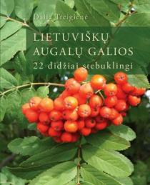 Lietuviškų augalų galios: 22 didžiai stebuklingi | Dalia Treigienė