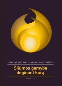 Šilumos gamyba deginant kurą | Vytautas Martinaitis, Valdas Lukoševičius