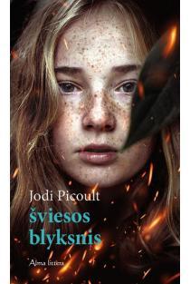 Šviesos blyksnis | Jodi Picoult
