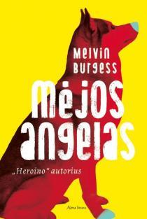 Mėjos angelas | Melvin Burgess