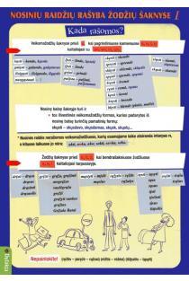 Nosinių raidžių rašyba žodžių šaknyse I (dalijamoji medžiaga, A5) |
