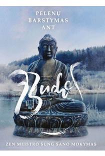 Pelenų barstymas ant Budos. Zen meistro Sung Sano mokymas | Stephen Mitchell